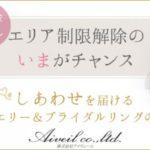 【Aiveil ~アイヴェール~】 ブライダル プロデュース ビジネス 未経験OK 開業資金0円から 女性活躍 充実のサポート体制 【委託業務】【加盟店】