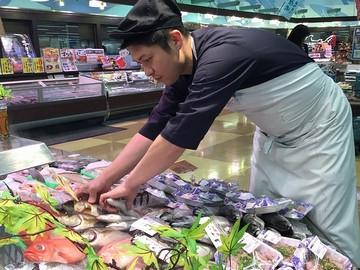株式会社最上鮮魚 求人募集